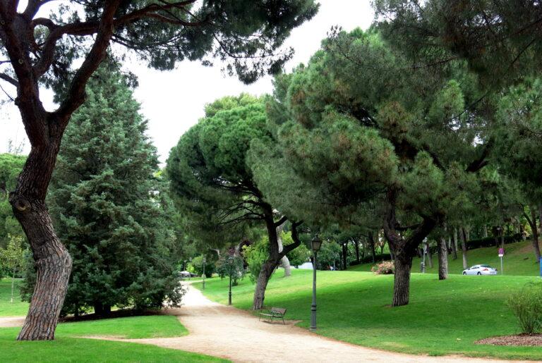 consultoría ambiental en Madrid